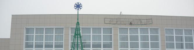 В Елово установили искусственную елку 8 метров